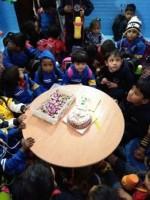 TOP KIDS SCHOOL IN GAYA